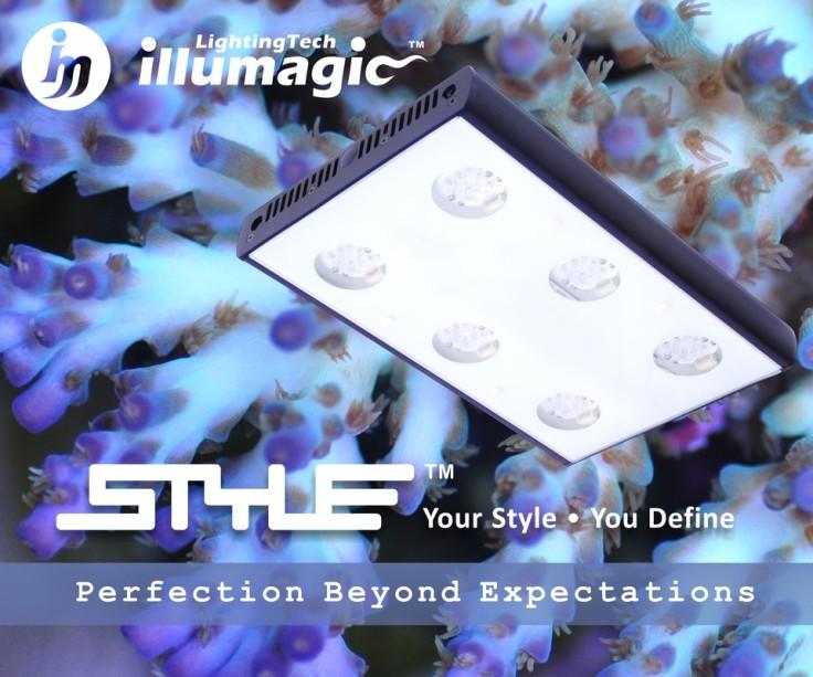 style_orig.jpg